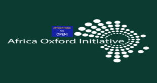 2019 Application for Africa Oxford Initiative Travel Grant