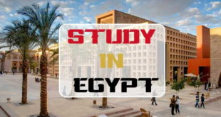 AUC Future Leaders 2019 Undergraduates Scholarship Scheme to Study in Egypt | Apply