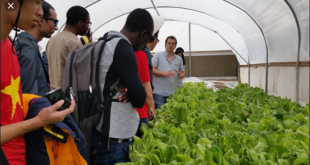 Climate, Food and Farming-Global Research Alliance Development Scholarship