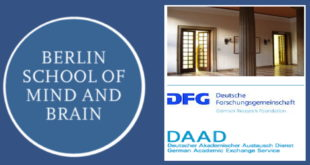DAAD International Scholarships 2020 at Berlin School of Mind & Brain, Germany