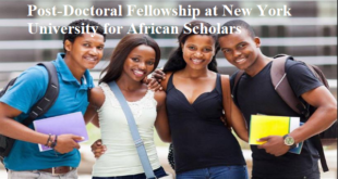Post-Doctoral Fellowship at New York University for African Scholars