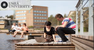 2020 International Students Scholarships at Umeå University