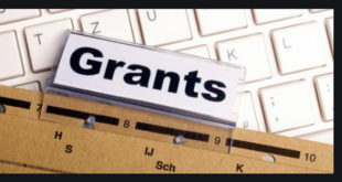 Call for Application: ICGEB Research Grants