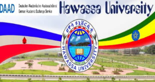 DAAD In-Country / In-Region Scholarships for Africans at Hawassa University