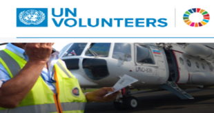 International UN Volunteer Programme 2020