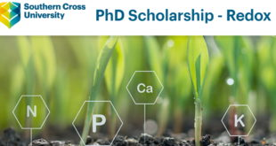Southern Cross University International Doctoral Funding