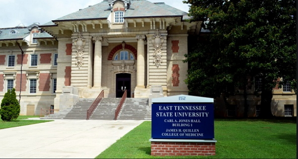 East Tennessee State University International Students Scholarship