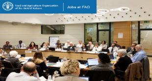 FAO Call for Application RAF Internship Programme