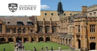 International Strategic Scholarship for Postgraduate Studies 2020