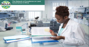 Research Fellowship for African Researchers