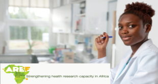 Africa Research Excellence Fund Fellowship Programme