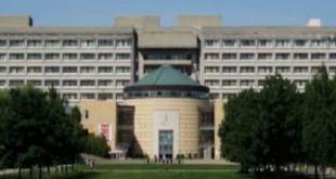 International Entrance Scholarship At York University