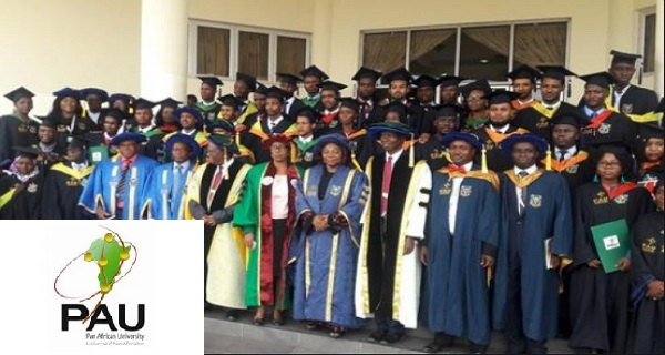Pan African University Postgraduate Scholarships 2020/21
