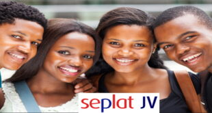 NPDC/SEPLAT National Undergraduate Scholarships 2020
