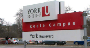 Scholarship at York University 2020