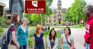 Hamline International Excellence 2020