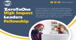 2020 ZeroToOne High Impact Leaders Fellowship