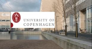 University of Copenhagen Postdoctoral 2020