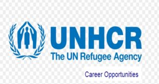 Vacancies at United Nations High Commissioner for Refugees (UNHCR)