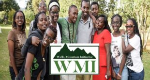 Wells Mountain Initiative 2021 Scholarship for Developing Countries