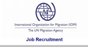 4 Fresh Jobs at International Organization for Migration (IOM)