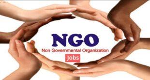22 Latest Ngo Jobs in Nigeria 2021 | Non-Governmental Organisation Jobs