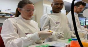 Queensland PhD 2021