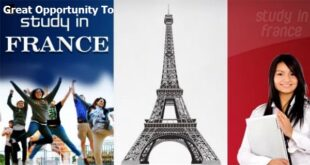 Top 15 Scholarships in France for Foreign Students