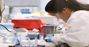 University of Queensland PhD 2021