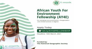 African Youth for Environment Fellowship