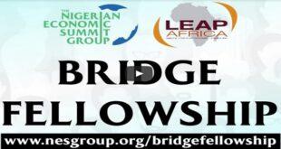 Nigerian Economic Summit Group Bridge Fellowship