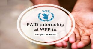 World Food Program (WFP) Career Opportunities, Policy Intern in Kenya